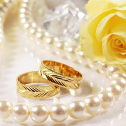 Holidays___Weddings_Wedding_rings_and_yellow_rose_055791_